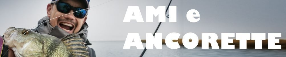 HOOKS / ANCHORS